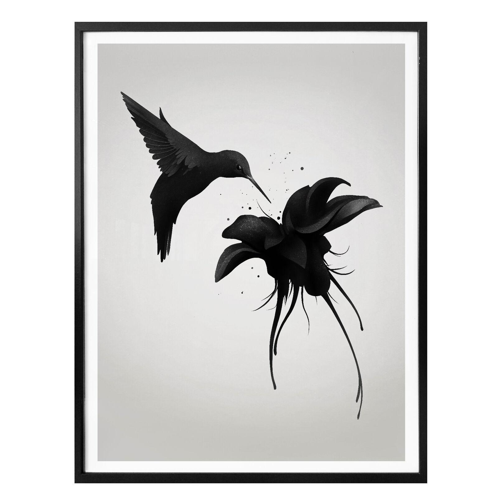 Poster Ireland - Chorum - Kolibri WANDDEKO BILD WANDBILD kratzfest farbecht FSC