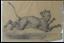 miniatuur 3 - Grand dessin E. Saulais Lionne courant fusain début XIXe suiveur Victor Adam