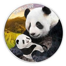 30 Gramm Silber Panda 2019 - 10 Yuan China - coloriert Farbe in Münzkapsel