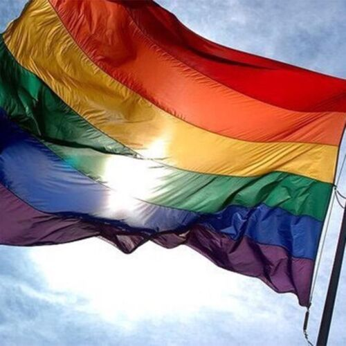 "Rainbow Flag 3 feet by 5 FT Gay Pride Lesbian 36x 60/"" LGBT Flag with Grommets TK"