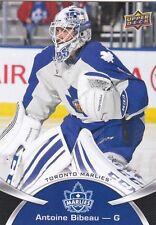 ANTOINE BIBEAU 2015-16 15-16 UPPER DECK AHL BASE #25 TORONTO MARLIES !