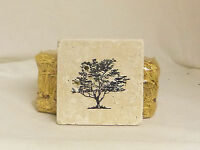 4 Dogwood Tree Tumbled Chiaro Stone Tile 4x4in Drink Coasters Home Bar Decor T11