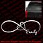 Infinity Heart FAMILY VINYL Die Cut DECAL Harmony Family Car Wall Window FM001