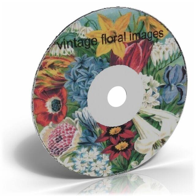 1500 VINTAGE FLOWER POSTCARD FLORAL CLIP ART on DVD
