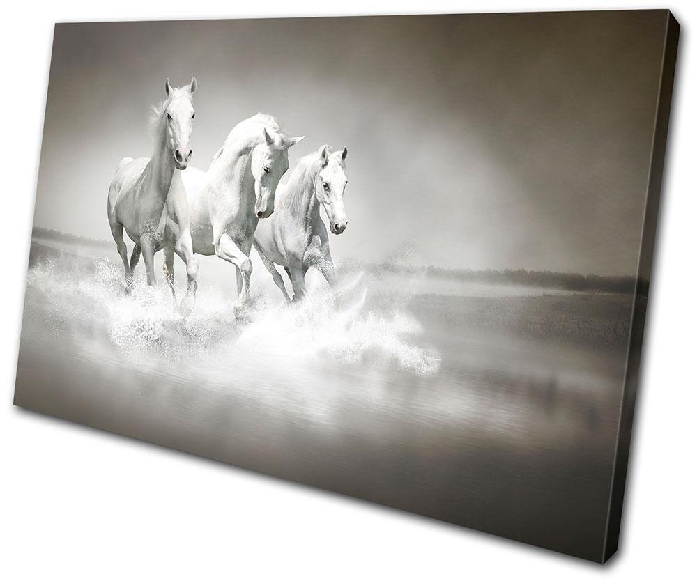 Animals Herd Horses SINGLE TOILE murale ART Photo Print