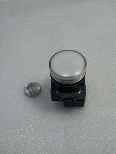LED Pilot Light Square D: XB5-AVB1 White