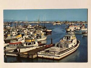 Sportfishing-Boats-Municipal-Yacht-Basin-San-Diego-Harbor-California-CA-Postcard