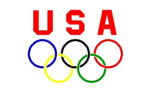"""USA UNITED STATES TEAM OLYMPIC OLYMPICS GAMES 5-RINGS FLAG 12x18/"""" INCH W// STICK"""