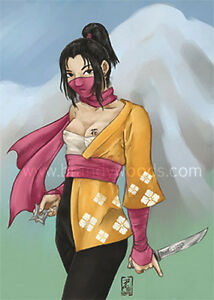 Japanese NINJA sexy cute Kunoichi Girl pinup fantasy art ...