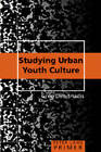 Studying Urban Youth Culture Primer by Greg Dimitriadis (Paperback, 2007)