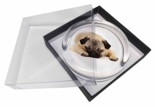 AD-P92PW Pug Dog Glass Paperweight in Gift Box Christmas Present