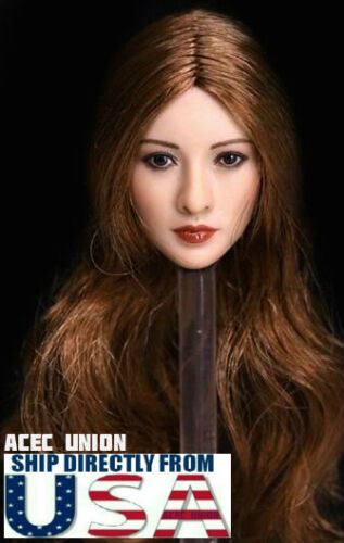 1//6 Asian Beauty Female Head Sculpt Brown Hair For Hot Toys Phicen Suntan U.S.A.
