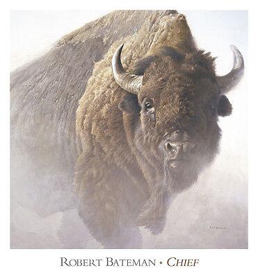Chief by Robert Bateman Art Print Buffalo Bison Wildlife Decor Poster 28x26