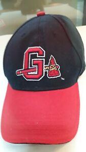 NEW-MLB-Gwinnett-Braves-Stripers-Chop-On-Tomahawk-Hat-Cap-Atlanta-baseball-Blue