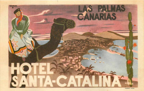CANARIAS~ Beautiful Old Luggage Label Hotel Santa Catalina ~CANARY ISLANDS