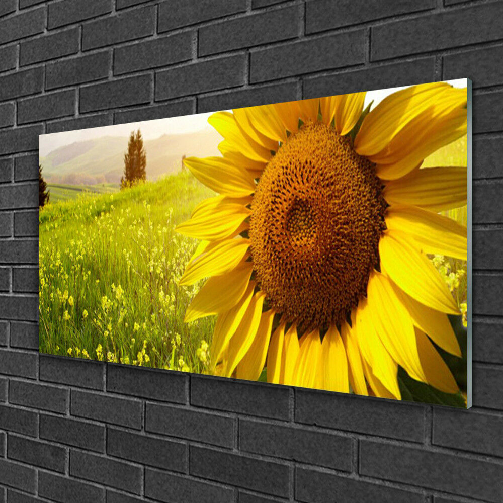 Print on Glass Wall art 100x50 Picture Image Sunflower Floral