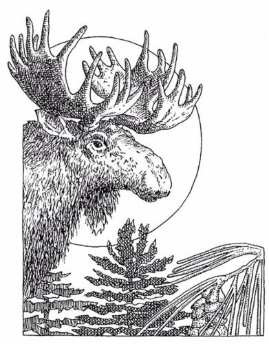 Winter MOOSE Scene Wood Mounted Rubber Stamp IMPRESSION OBSESSION G2546 New