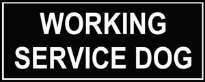Dean-amp-Tyler-WORKING-SERVICE-DOG-Patches-for-Working-Dog-Harness-Sm-Med-or-Lg