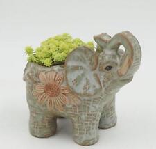 New Ceramic pot elephant Cacti Succulent Plant Pot Flower Planter Mini Garden