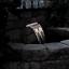thumbnail 12 - Oase Pontec PondoFall Garden Pond Waterfall Blade Standard or LED Spillway Box