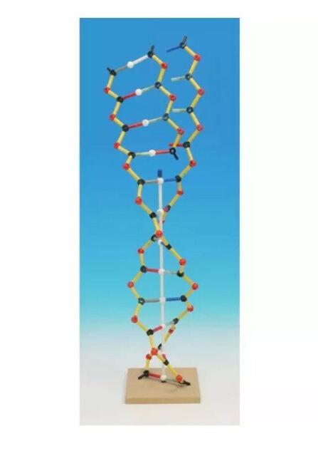 Cochranes Of Oxford DNA-RNA Kit (Orbit)
