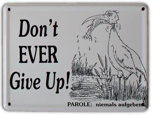 DON-039-T-EVER-GIVE-UP-Small-Vintage-Metal-Tin-Pub-Sign