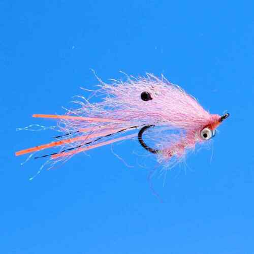 #6 BC Pink NEW FREE SHIPPING EP Ghost Shrimp