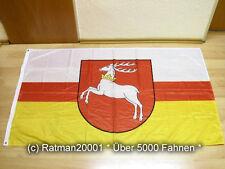 Fahnen Flagge Lublin Woiwodschaft Polen Digitaldruck - 90 x 150 cm