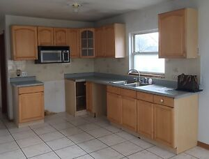 Used Wood Kitchen Cabinets, Countertop, Double Base Sink ...