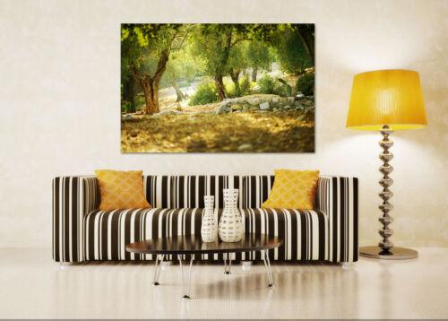 Details about  /3D Forest Nature 778 Wall Stickers Vinyl Murals Wall Print Deco AJSTORE UK Lemon