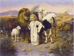 PEACE-ANGEL-LION-LAMB-SHEEP-COW-WOLF-STRUTT-CANVAS-ART