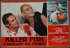 fotobusta KILLER FISH MAJORS KAREN BLACK MARGAUX HEMINGWAY BERENSON FRANCISCUS