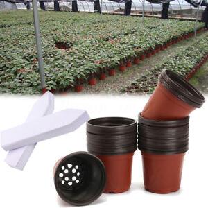 50pcs plastique pot de plante fleur jardinier outils jardinage jardin tiquettes ebay. Black Bedroom Furniture Sets. Home Design Ideas