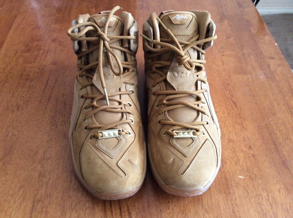 Gentlemen/Ladies lebron 12 ext qs size11 Reliable quality Fast delivery Exquisite (processing) processing