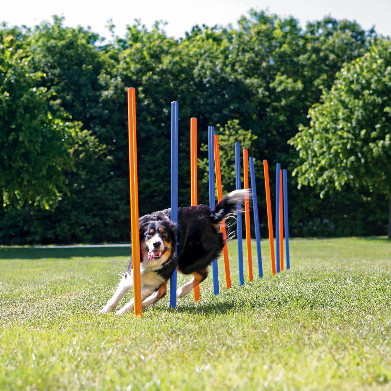 TRIXIE Dog Activity AGILITY Slalom, 115 x 3 cm Dia, ArancioneBlu, 12 PEZZI