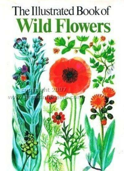 Oxford Book of Wild Flowers By S. Ary, Mary Gregory. 0907408494