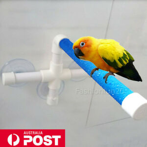 Wall-Suction-Bird-Perch-Stand-Parrot-Play-Paw-Rack-Shower-Bath-Platform-Toy-AU