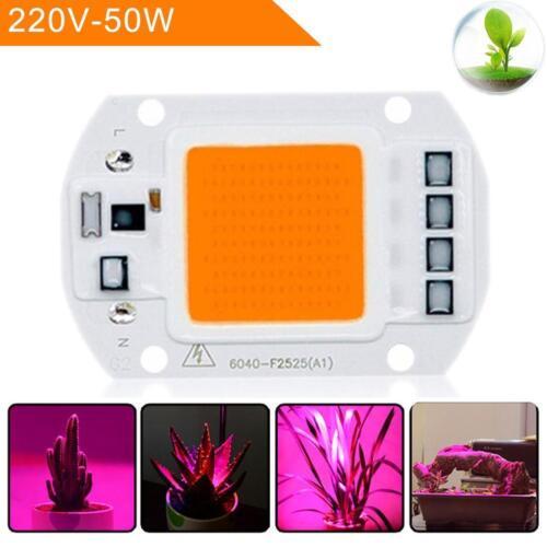 50W Full Spectrum LED COB Chip helle Anlage Lampen Birne Grow HS