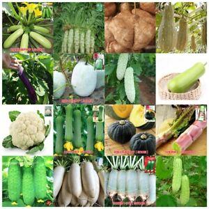 Vegetable-Garden-Retail-package