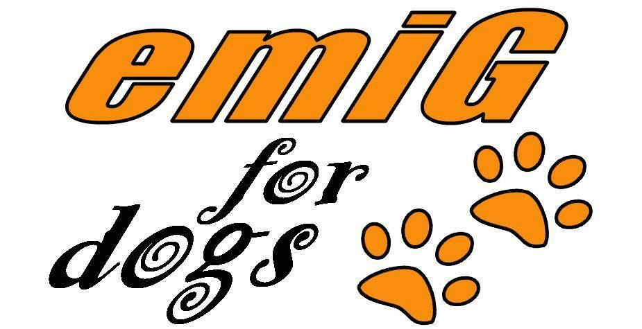 Gummibärchen jetzt auch für für für den Hund - alle Grössen zur Auswahl - TOP Qualität     | Lebensecht  a32463