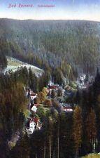 Ansichtskarte Bad Reinerz Schmelzetal - 00544