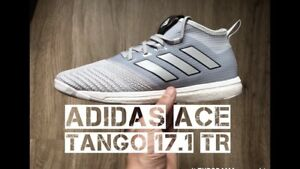 size 40 bfbf9 12704 Details about adidas ACE Tango 17.1 TR Men's Training Street Soccer  Football Shoes Grey 1706