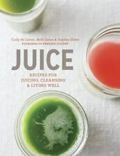 Juice : Recipes for Juicing, Cleansing, and Living Well by Carly de Castro,...