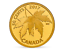 2017 Maple Leaf Acer Saccharinum 50 Cent 1//25OZ Pure Gold Proof Coin Canada