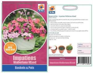 Ree-Impatiens-Walleriana-Einfach-Wachsen-Topf-amp-Korb-Blumengarten-Samen-Scheibe