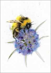 Image Is Loading HELEN APRIL ROSE Limited Print BEE And THISTLE