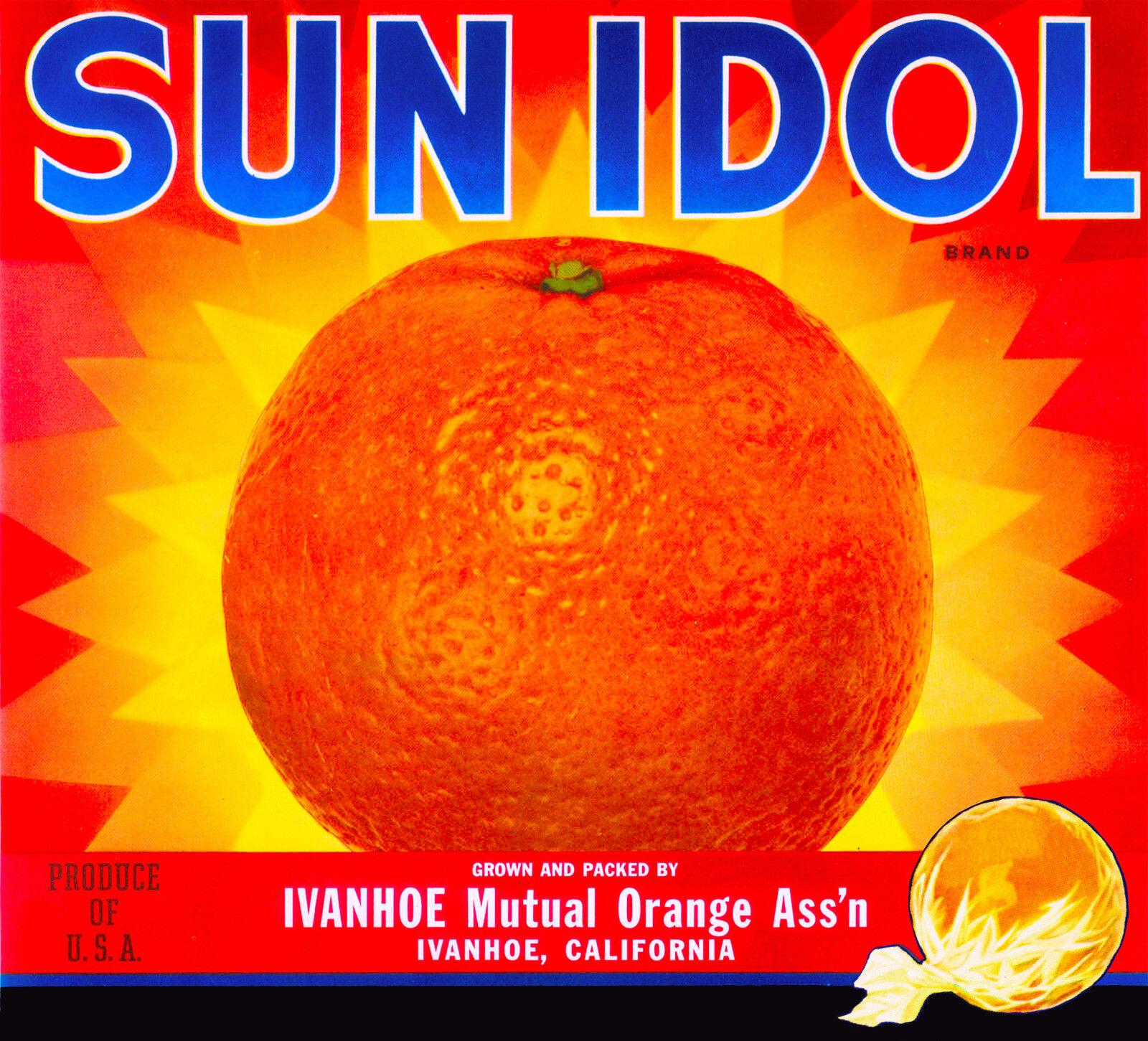 Exeter Tulare County Skyrocket  Orange Citrus Fruit Crate Label Print