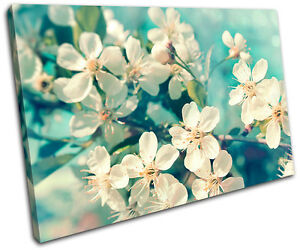 Cherry Blossom Canvas Wall Art cherry blossom teal floral single canvas wall art picture print va