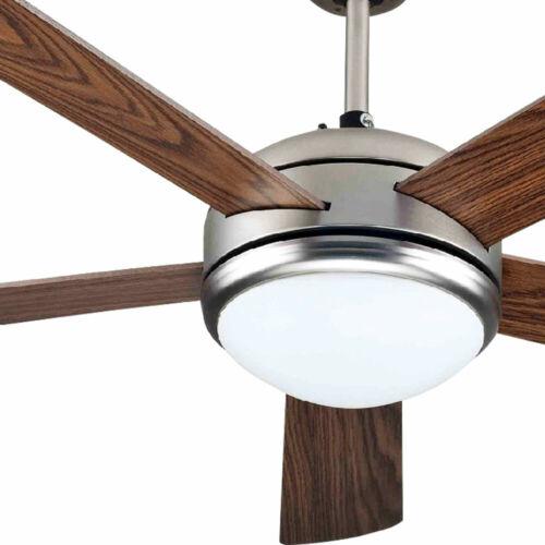 DEL Lumière du jour Ventilateur Plafond TIMER Ventilateur Verre Lampe Télécommande Refroidisseur