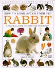 Rabbit by Mark Evans (Paperback, 1996)